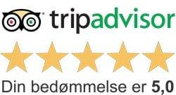 Angelica Massage Aarhus - Massage Højbjerg - Anbefaling Tripadvisor
